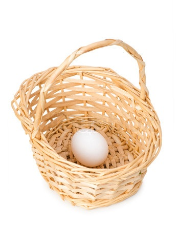 Single Egg in Basket